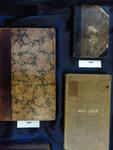 Book Covers Exhibit Case-Photo 3