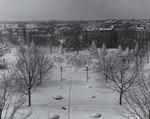 Snowy View of Harkins